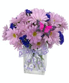 Lavender daisies and purple statice in a clear glass vase tied with a purple ribbon.