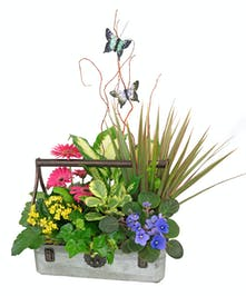 Pretty assortment of green and blooming plants arranged in a decorative metal planter.