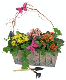 Charming, rustic planter with blooming kalanchoes, ivy and mini garden tools.
