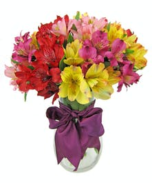 Peruvian lilies in hues of red, yellow and pink in a clear glass vase tied with purple ribbon.