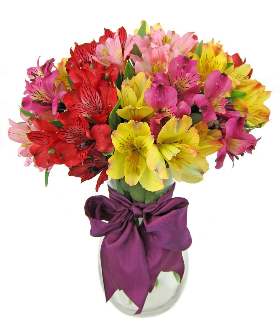 Rainbow Alstromeria Flowers Zeidler S Flowers Evansville