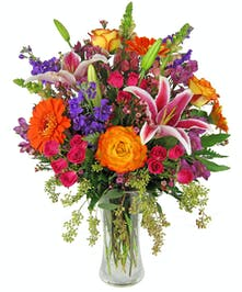 Tall, showy mix in bright assorted colors including purple and orange.