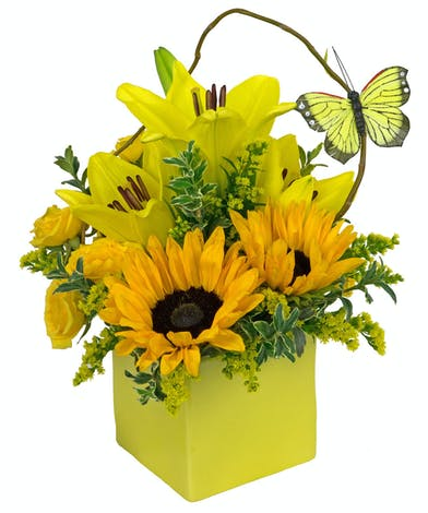 Yellow cube filled with sunflowers, yellow lilies and spray roses.