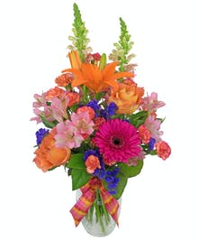 Colorful snapdragons, lilies, free spirit roses, alstromeria, mini carnations, carnations, gerbera daisies and statice in a clear glass vase tied with a ribbon.
