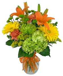Green, orange and yellow flowers in a glass vase tied with an orange ribbon.