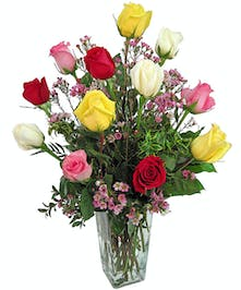 An assortment of colored roses when you can't choose just one.
