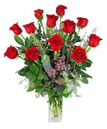 Premium Red Roses