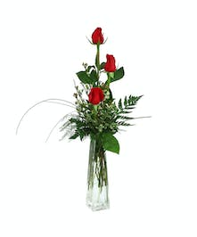 Choose the triple budvase for a thoughtful delivery from Zeidler's today.