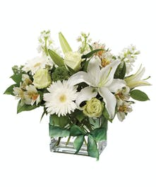 Single white oriental lily surrounded by roses, gerbera daisies, alstromeria and stock in hues of white and green in a clear glass cube vase.