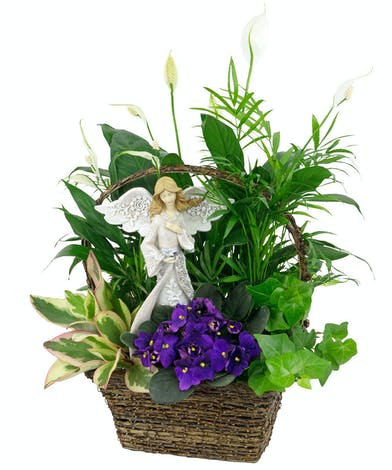 Plants, both green and blooming, plus a pretty angel, make a thoughtful gift.