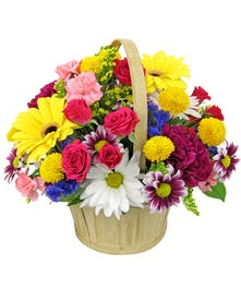 Ideal for any occasion, a colorful basket of blooms!