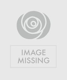 Purple African violet house plant in an orange ceramic polka dot planter.