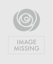 Polka dot ceramic planter available with a variety of blooming plants.