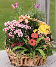 A variety of blooming plants in a wicker basket with butterfly decorations.