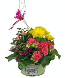 Three sizes to fit your needs, all with a variety of pretty blooming plants.