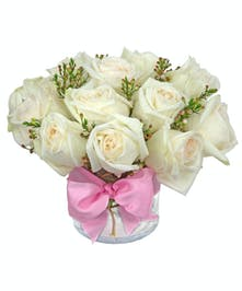 A limited time special on these premium garden roses.