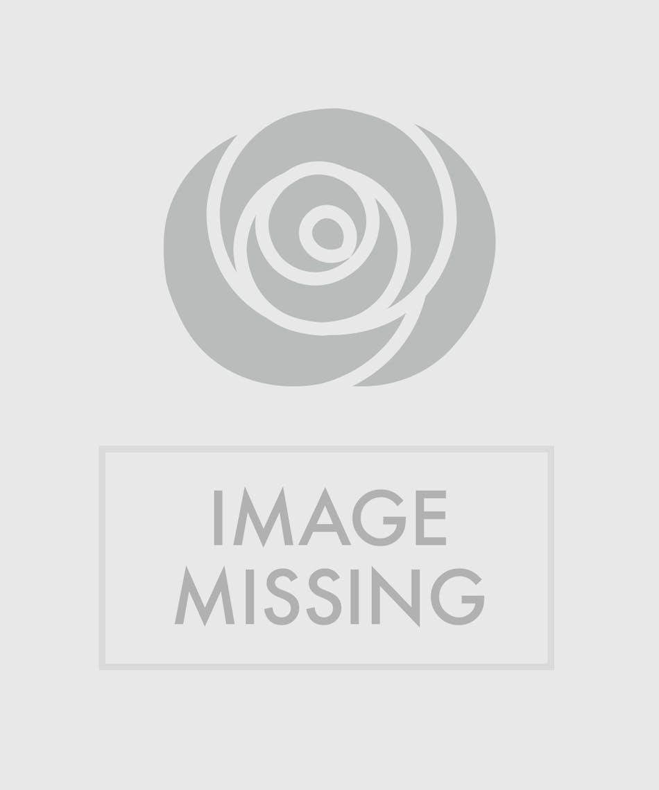 Midnight Romance Corsage Zeidlers Flowers