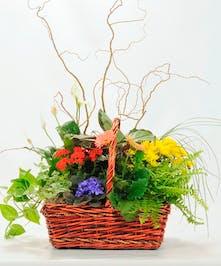 Heavenly Garden - Market Basket