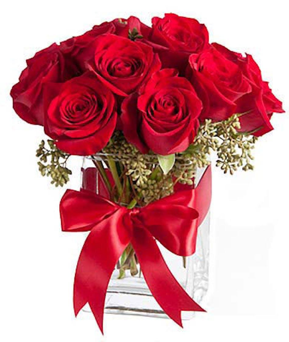 One Dozen Sympathy Roses   Evansville Sympathy Flowers