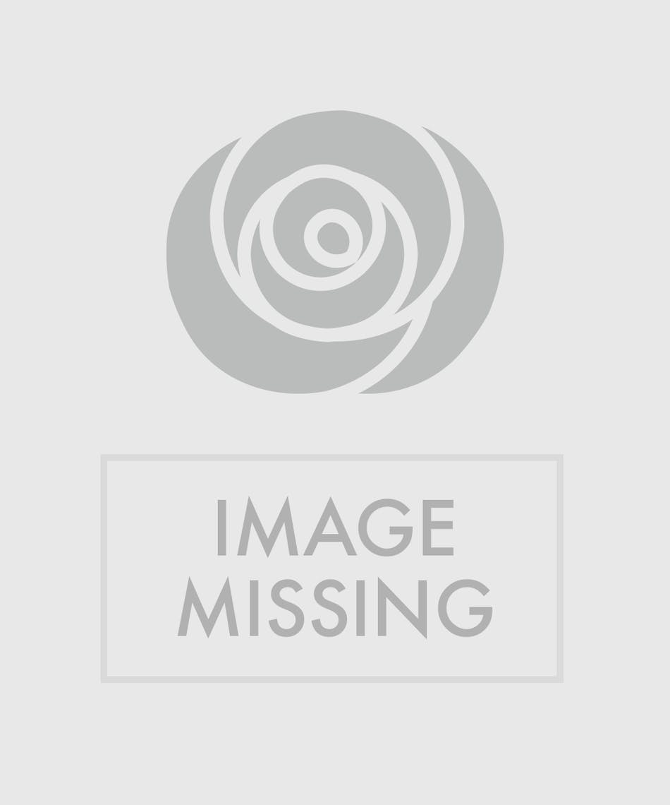 Deluxe Sweetheart Rose Corsage In Pink Zeidlers Flowers