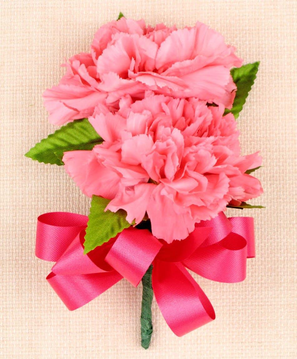Carnation corsage zeidler 39 s flowers evansville indiana for Select motors evansville in