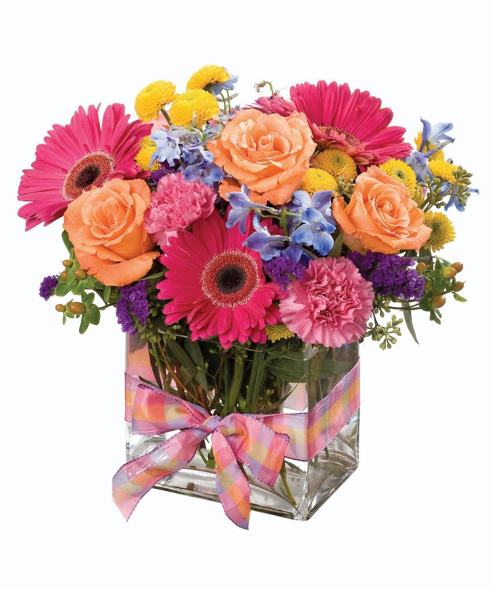 Rainbow Sherbet Zeidler S Flowers Evansville In