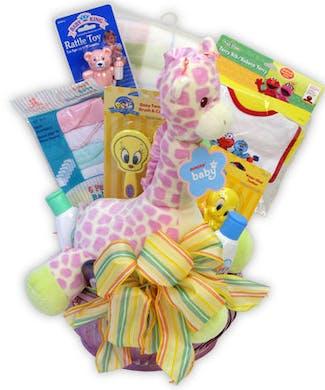 Baby Gift Basket - Girl