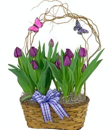 Double Tulip Basket
