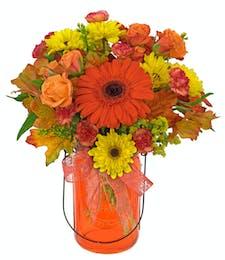 Orange You Pretty