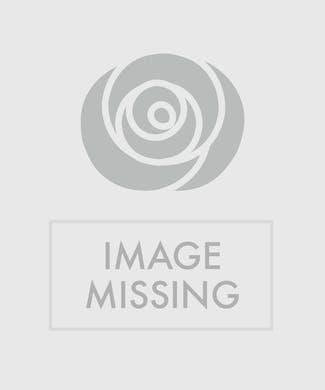 Large Stepping Stone - Serenity Prayer