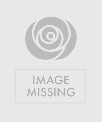 Innocence  Boutonniere - Deluxe