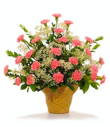 Cherish - Carnation Arrangement