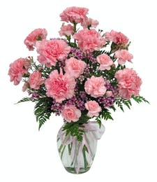 Cherish - Carnation Vased Bouquet