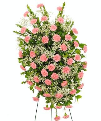 Cherish - Carnation Easel Spray