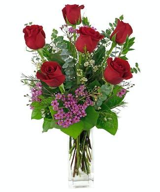6 Roses