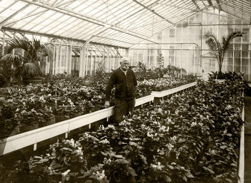 Inside the greenhouse with our founder, some time around the turn of the century