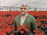 Al poses amid a field of poinsettias, circa 1980